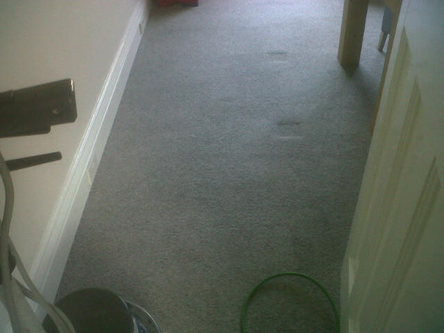 Mrs Smith's carpet after cleaning